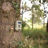 Wildlife camera 12 megapixel SAS-DVRODR22_